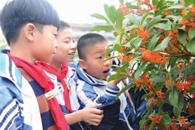 今日龙溪小学农村孩子-玉环中心小学的平台们设施数字报刊图片